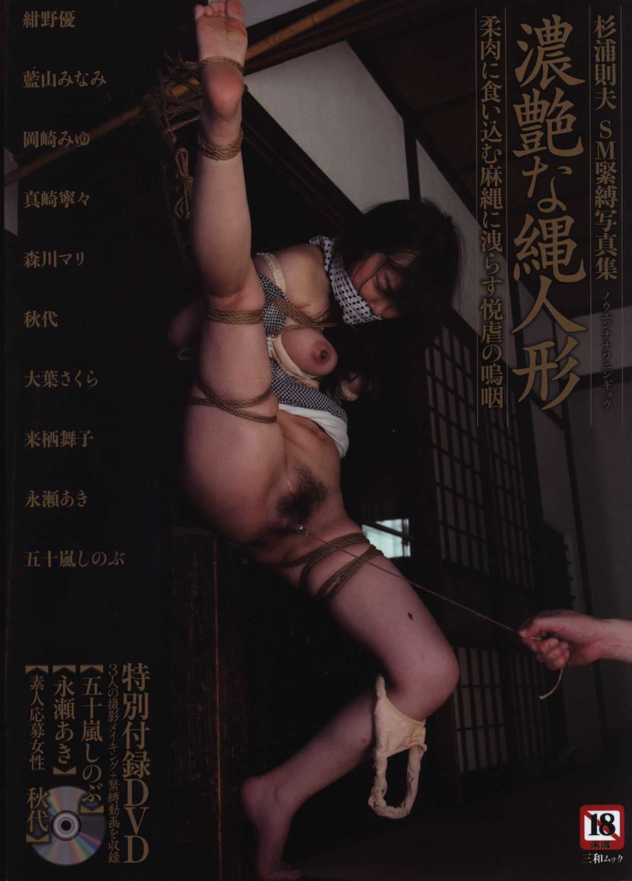 norio sugiura japanese bondage