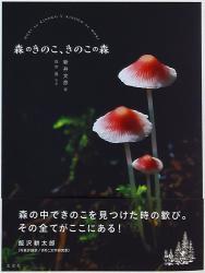 新井文彦/白水貴