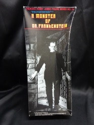 A MONSTER OF DR FRANKENSTEIN