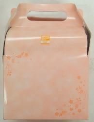あおしんごう(IG)